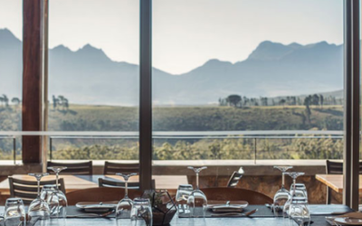 Inside Guide : The 30 Best Wine-Tasting Farms in the Cape